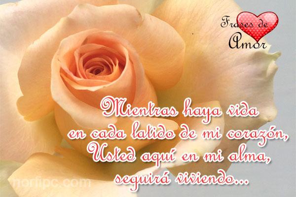 amor23