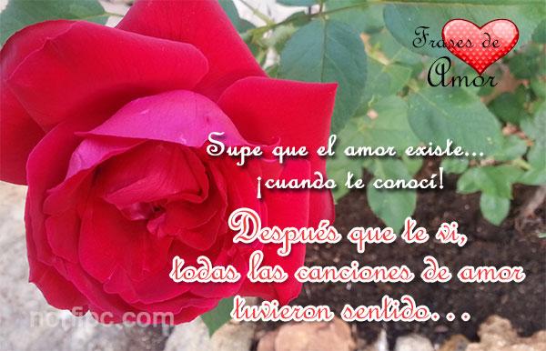 amor24