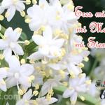Imágenes bonitas con poemas, dedicatorias y mensajes de amor para enamorados