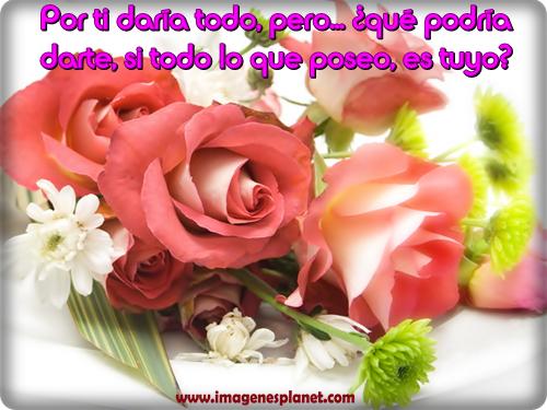 amor-jpg4
