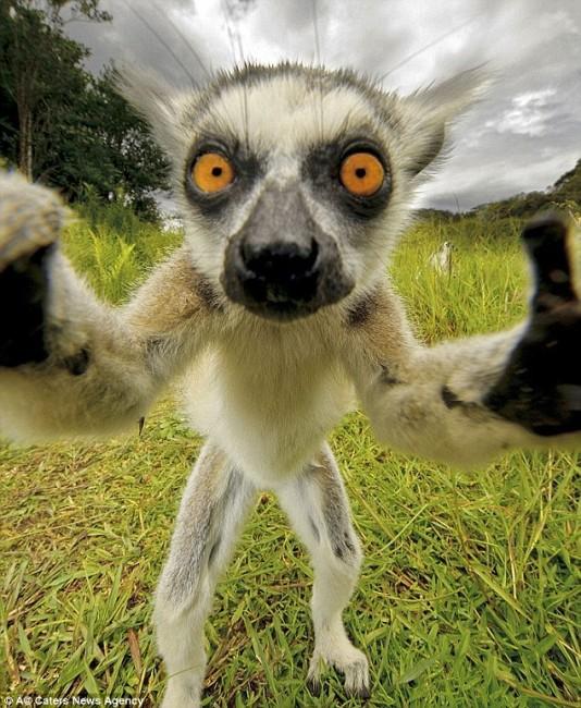 selfie3
