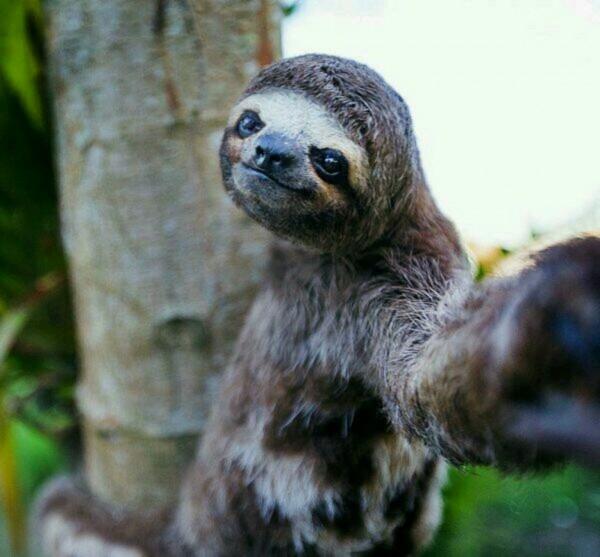 selfie4