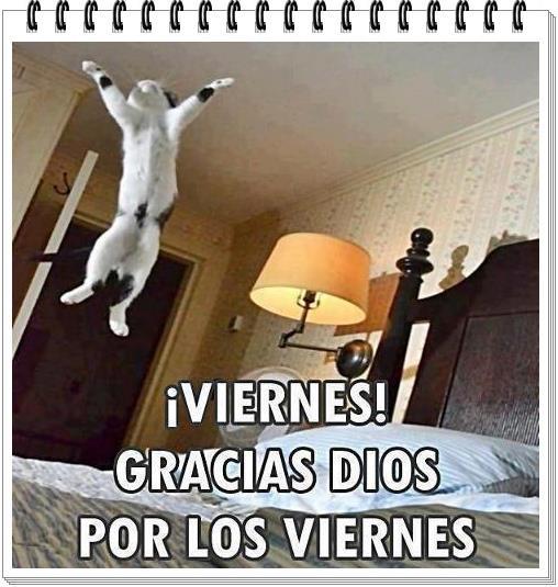 viernes11