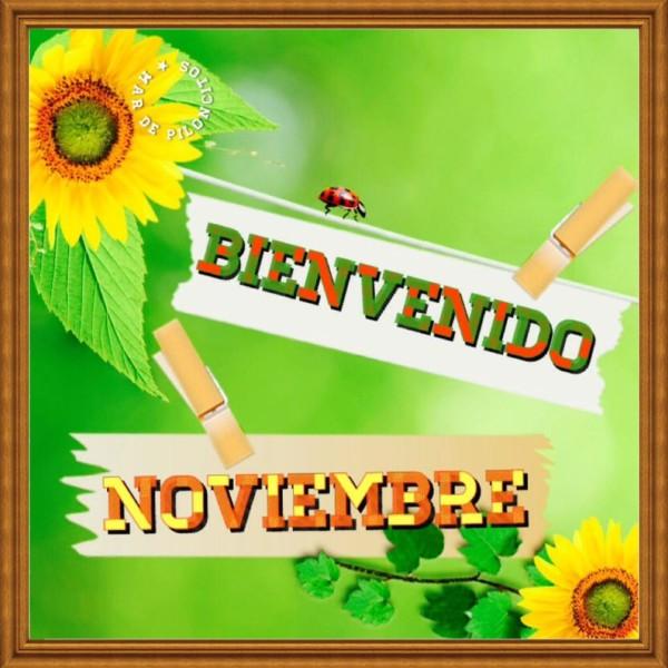 noviembrebienvenido