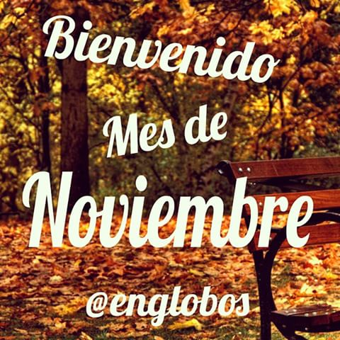 noviembrebienvenido-jpg14