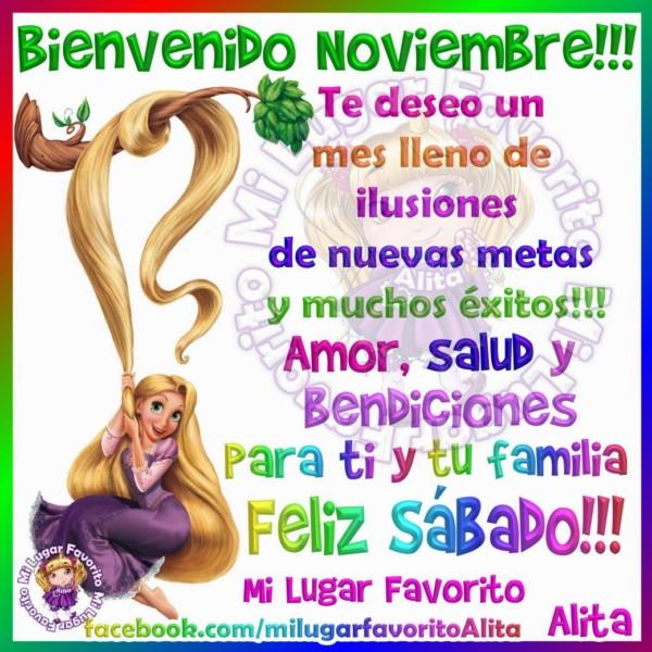noviembrebienvenidofrase-jpg14