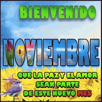 noviembrebienvenidofrase-jpg15