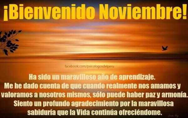 noviembrebienvenidofrase-jpg20