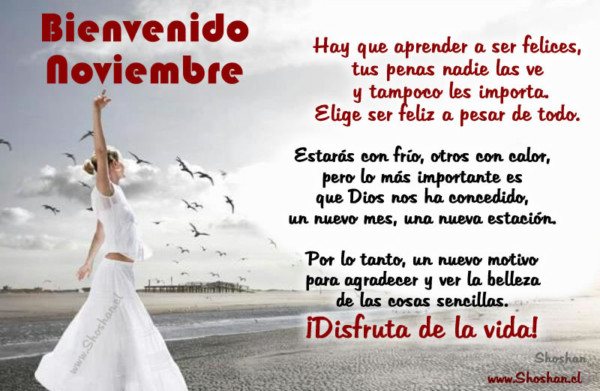 noviembrebienvenidofrase-jpg21