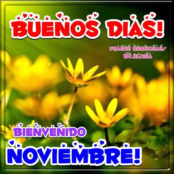 noviembrebienvenidofrase-jpg9