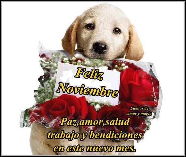noviembrefelizfrase-jpg5