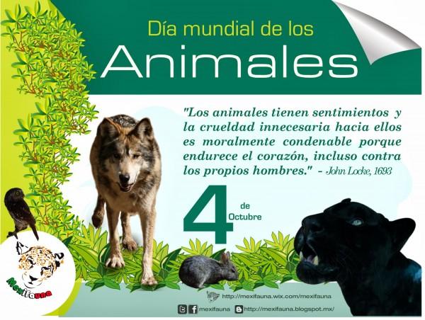 Día Del Animal 29 De Abril 2020 Imágenes Y Mensajes