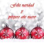 100 Imágenes bonitas de Navidad y Año nuevo