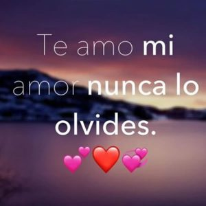 Imágenes Bonitas De Amor Con Frases Y Mensajes Para Enviar Y